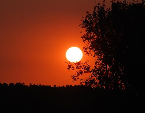 паустовский прощание с летом краткое содержание